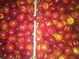 Персики нектарины - фото 1
