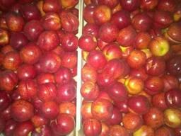 Персики нектарины