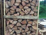Beech Firewood - photo 3