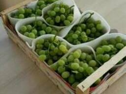 Фрукты Сербия- виноград груша яблоко - фото 2