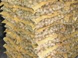 Картофель из Беларуси / Krompir iz Belorusije - фото 4