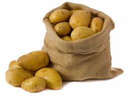 Картофель сорт  Крона оптом