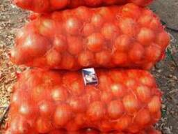 Onion - photo 3