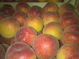 Персики нектарины - фото 2
