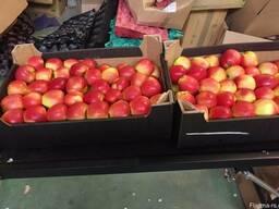 Яблоки из Польши! Apples from Poland! - фото 4