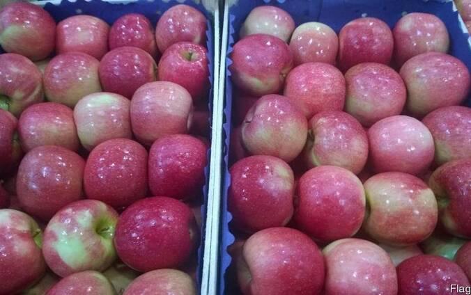 Яблоко из Сербии