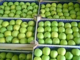 Яблоко из Сербии - фото 2