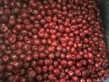 Срочная отгрузка (малина, фасоль, вишня) - фото 4